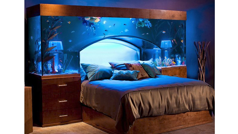 Having a bed with an aquarium head