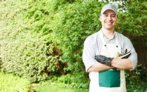 Hiring a professional landscaping expert